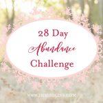 28 Day Abundance Challenge